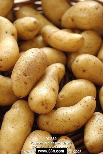 فوائد عن البطاطا X5hy8safaguvo54z19o2do5l8zkymkga